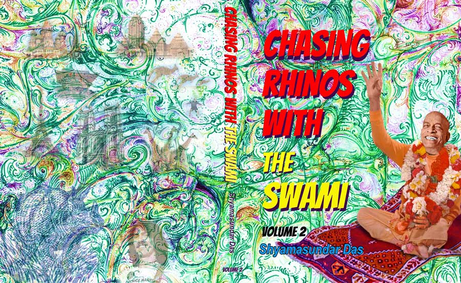 Chasing-Rhinos-Book-Cover